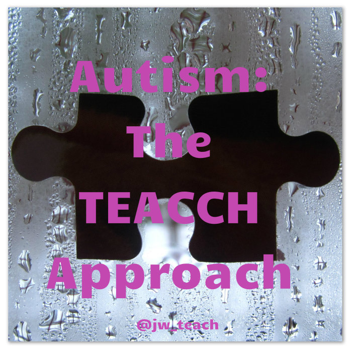 Autism The Teacch approach