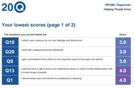 NPQML 20Q assessment.jpg