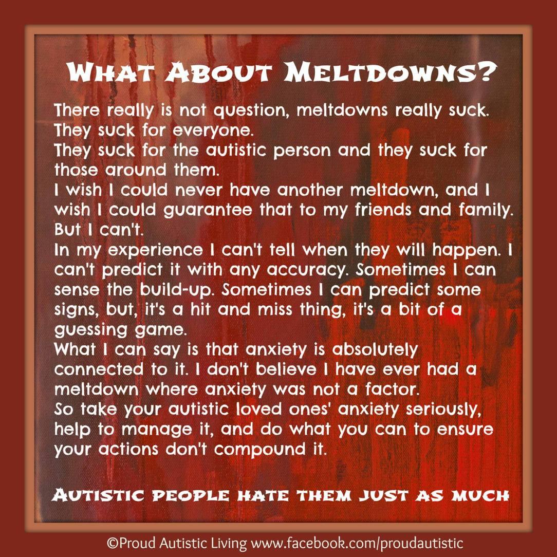 Proud Autistic Meltodowns ASD.jpg