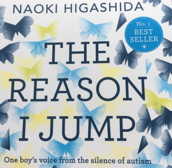 The Reason I jump Lessons learned from Noaki HIgasidas book on autism