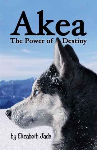 Akea power of destiny book cover