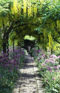 zyst trees garden sensory.jpg